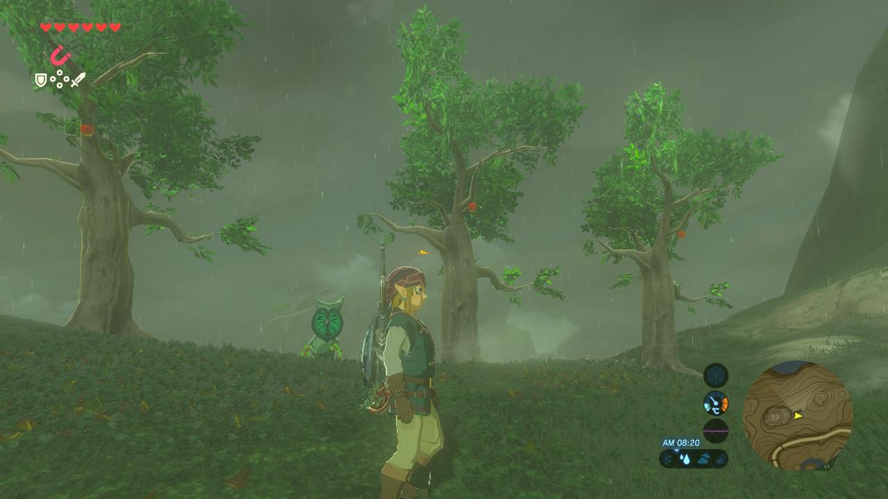 コルグ木の実そろえる2