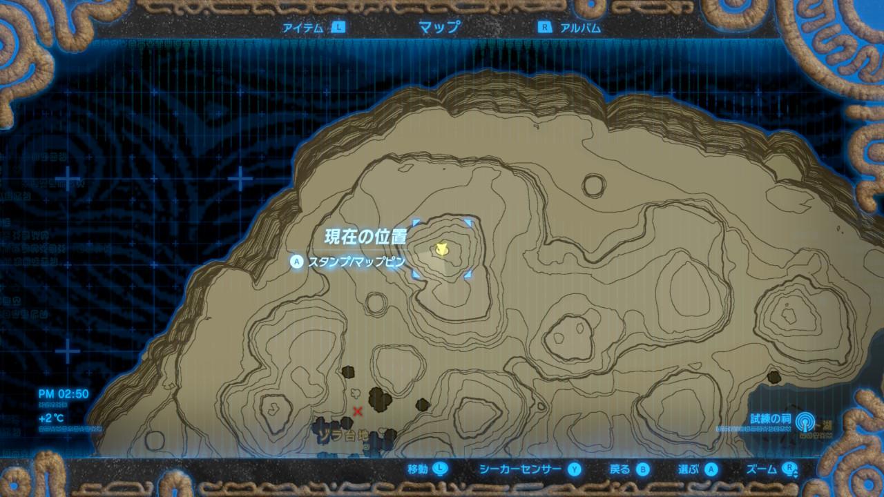 岩の上にもコログの実 (2).jpg