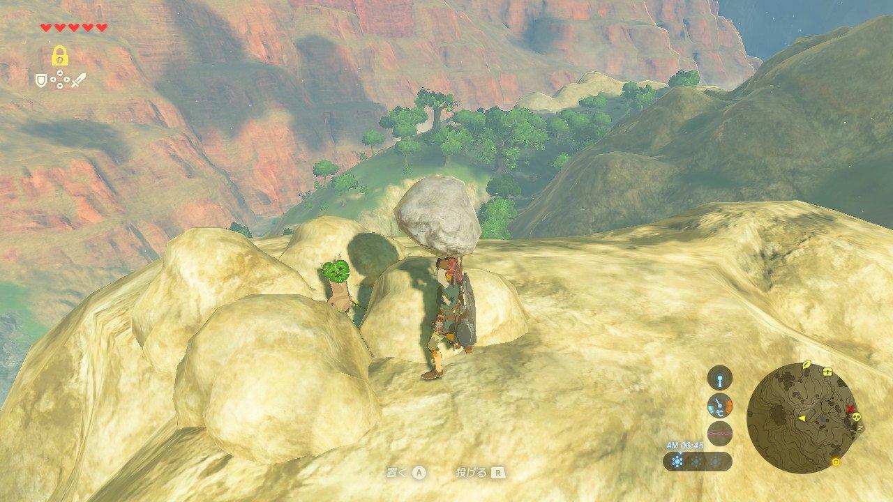 岩の下にもコログ